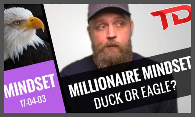 Millionaire Mindset – Are you a Duck or an Eagle?